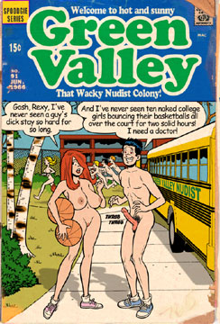 Green Valley cover 4